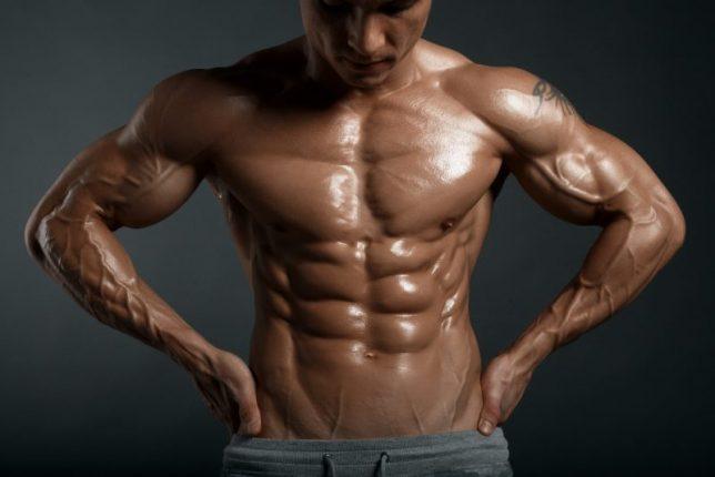 ämnesomsättningen bodybuilding